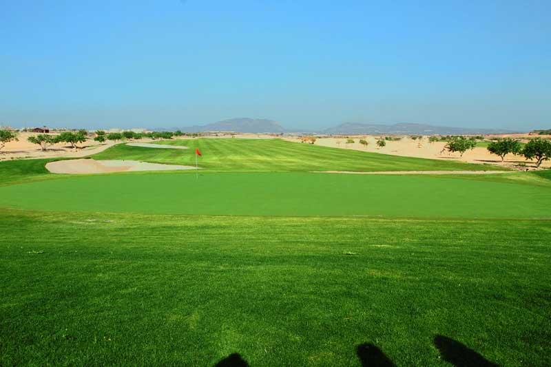 New Sierra Golf web 6